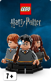 LEGO® Harry Potter